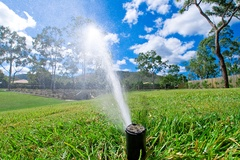 Florida Summer Irrigation Tips