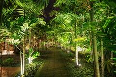 Light Up Your Landscaping With Led Landscape Lighting