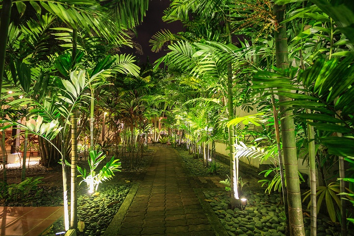 Light Up Your Landscaping With Led Landscape Lighting