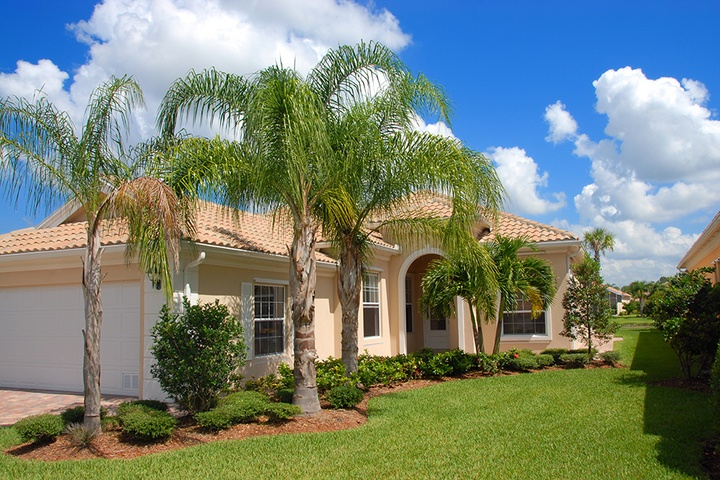 Tips to Keep Grass Green in a Florida Summer