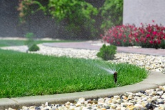 When Is The Best Time To Water My Florida Grass?